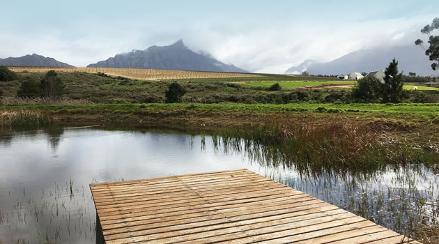 MANLEY WINE LODGE, TULBAGH