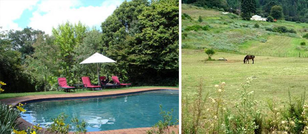 glenshiel, hotel, accommodation, limpopo, magoebaskloof, haenertsburg, wedding, conference, event, facilities